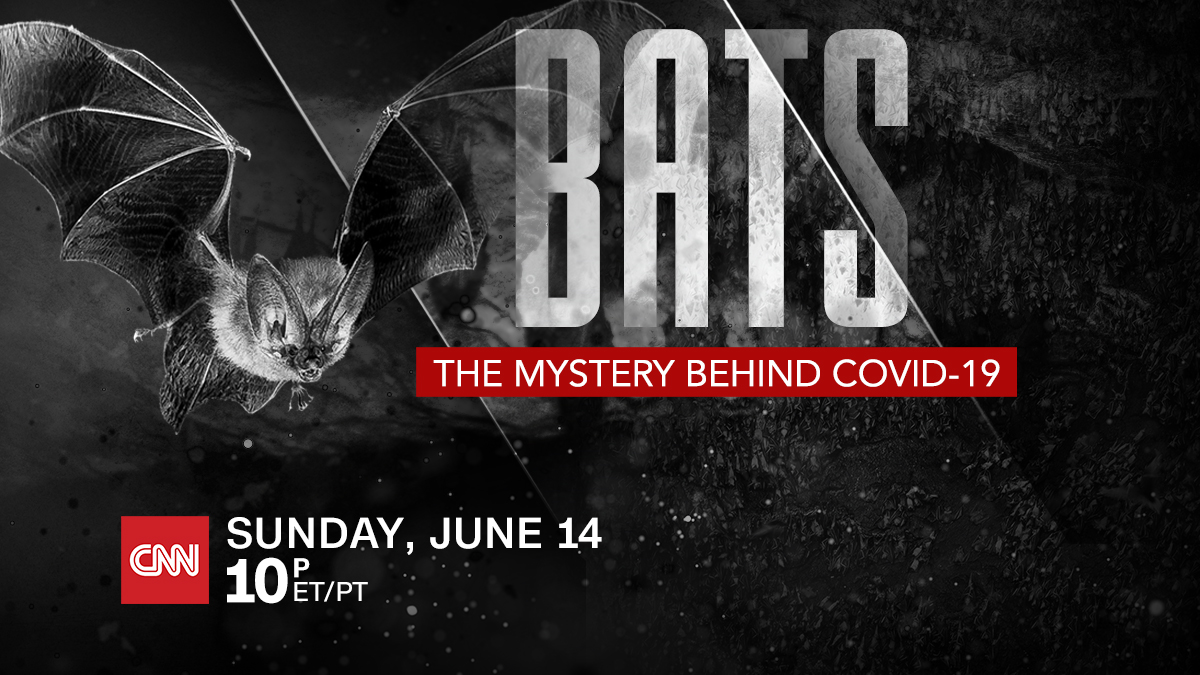 Photo of CNN takes a look at the connection between bats and Covid-19 – BATS: The Mystery